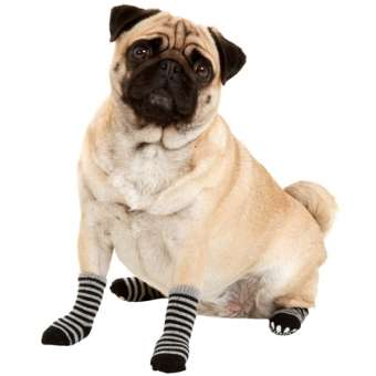 Karlie Doggy Socks Hundesocken 4er Set - Schwarz/Grau XS
