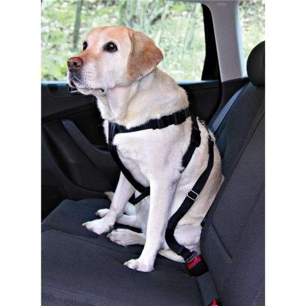 Trixie Auto-Sicherheitsgeschirr L